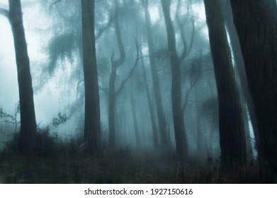 spooky-magical-forest-english-countrysid