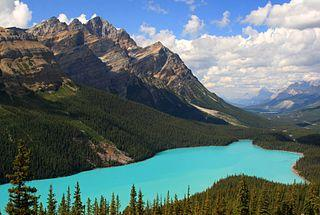 320px-Classic_view_of_a_cloudfree_Peyto_