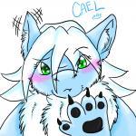 CaelThunderwing